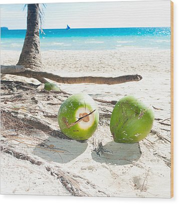 Fallen Coconuts Wood Print by Hans Engbers