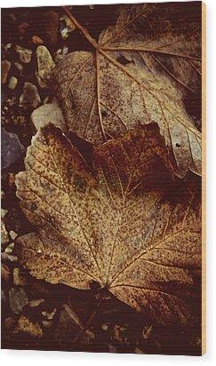 Fallen From Grace Wood Print by Odd Jeppesen