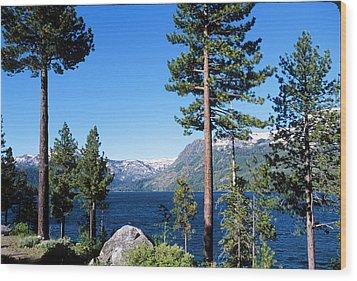 Fallen Leaf Lake Area With Pine Trees In Foreground, Lake Tahoe, California, Usa Wood Print by Ellen Skye