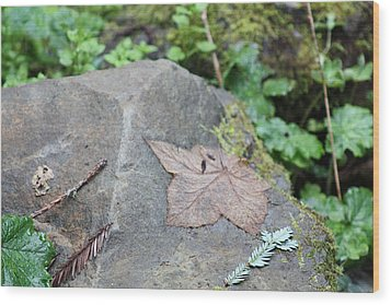 Wood Print featuring the photograph Fallen Nb by Susan Alvaro