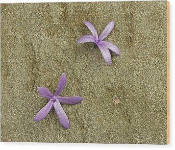 Fallen Stars Wood Print