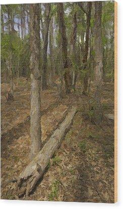 Fallen Tree In Forest Wood Print by M K  Miller