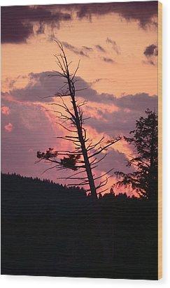 Falling Into The Sunset Wood Print by Mandi Howard
