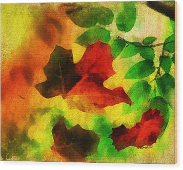 Falling Leaves Wood Print by Anthony Caruso