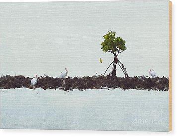 Falling Mangrove Leaf Wood Print by Dan Friend