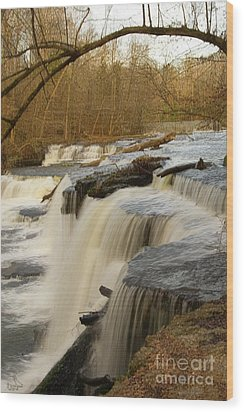 Falls At Old Stone Fort Wood Print by Michael Flood