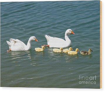 Family Outing On The Lake Wood Print by Ed Churchill