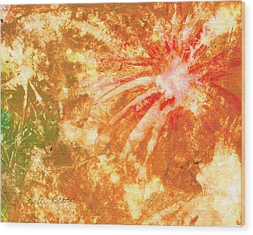 Fantastic Fireworks Wood Print by Rosie Brown