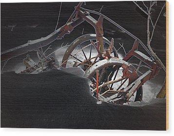 Farm Finds Wood Print by Cyryn Fyrcyd