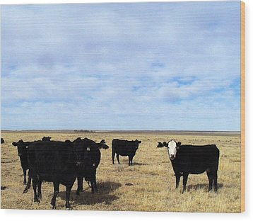 Wood Print featuring the photograph Farm Friends by Clarice  Lakota