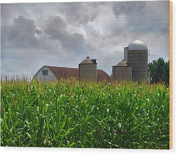 Farm Landscape Wood Print by Ms Judi