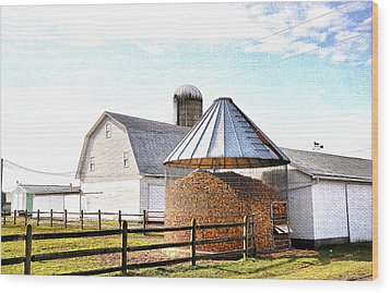 Farm Life Wood Print by Todd Hostetter