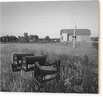 Farm On Hiway C Wood Print by Jan W Faul