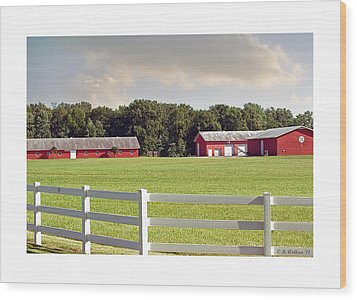 Farm Pasture Wood Print by Brian Wallace