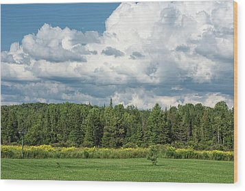 Farmland, Forests And Clouds On Sunny Day Wood Print by Denise Taylor