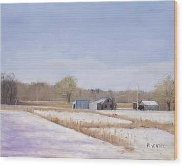 Farmland In Winter  Concord Massachusetts Wood Print by Mark Pimentel