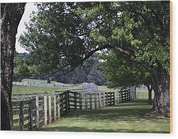 Farmland Shade Appomattox Virginia Wood Print by Teresa Mucha