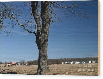 Wood Print featuring the photograph Farmland Versus Development by Karen Lee Ensley
