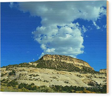 Wood Print featuring the photograph Faux Volcano by Lin Haring