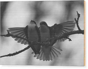 Feathered Encounter Wood Print by Angie Vogel