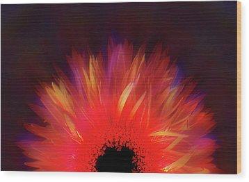 Feathered Floral Wood Print by Li   van Saathoff