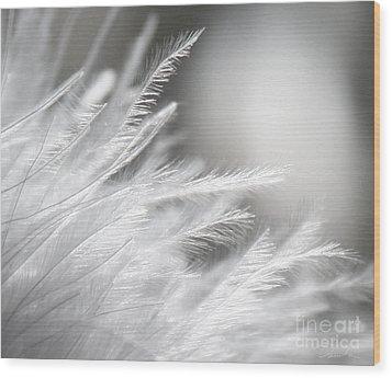 Feathery White Wood Print by Danuta Bennett