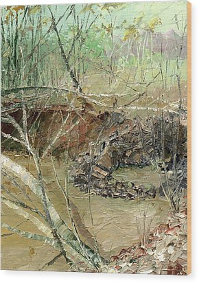 February Stream Wood Print by Sergey Zhiboedov