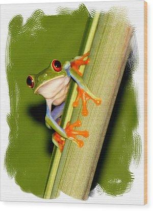Feeling Froggy Wood Print by Myrna Bradshaw