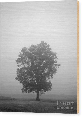 Feeling Small Wood Print by Amanda Barcon