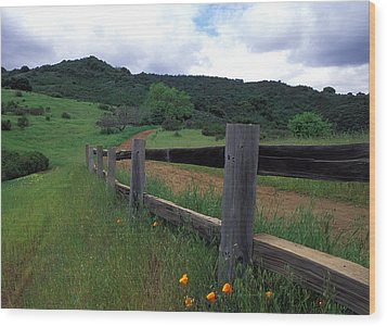Fence And Poppies Wood Print by Kathy Yates