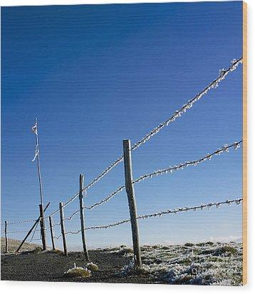 Fence Covered In Hoarfrost In Winter Wood Print by Bernard Jaubert