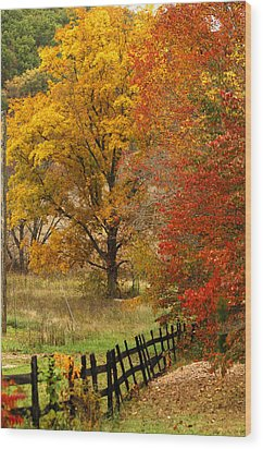 Fence In Autumn Wood Print by Randall Branham
