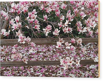 Wood Print featuring the photograph Fence Of Flowers by Elizabeth Winter