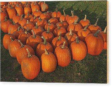 Field Of Pumpkins Wood Print by LeeAnn McLaneGoetz McLaneGoetzStudioLLCcom