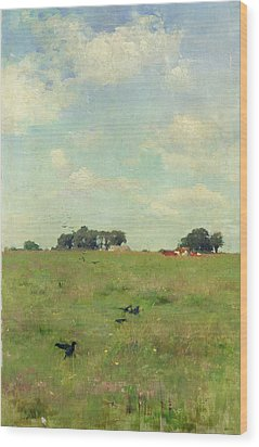Field With Trees And Sky Wood Print by Walter Frederick Osborne