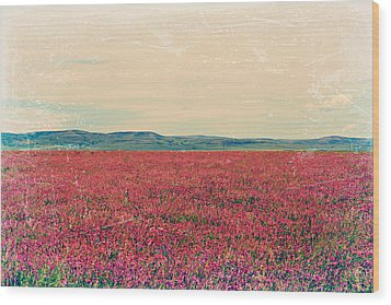Fields Of Heaven Wood Print by Leanna Lomanski