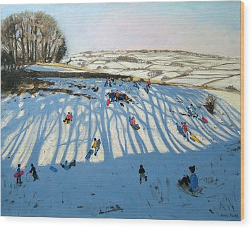 Fields Of Shadows Wood Print by Andrew Macara
