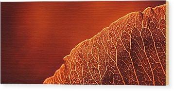 Fifty Shades Of Red Wood Print by John Hamlon