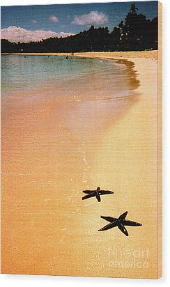 Fiji Beach With Starfish Wood Print by Jerome Stumphauzer