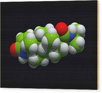 Finasteride Hair Loss Drug Molecule Wood Print by Dr Tim Evans