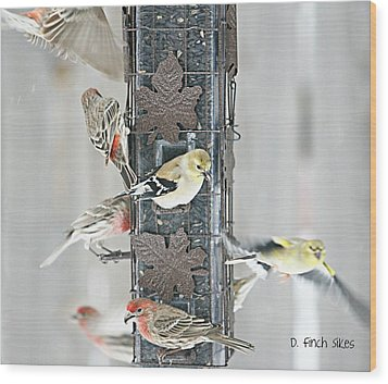 Finches Wood Print by Debbie Sikes