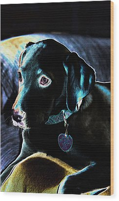 Fine Art Puppy Portrait Wood Print by Linda Phelps