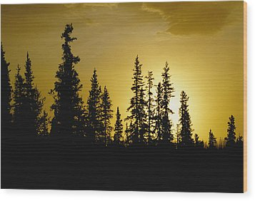 Fir Trees Silhouetted In Early Morning Wood Print by George F. Mobley