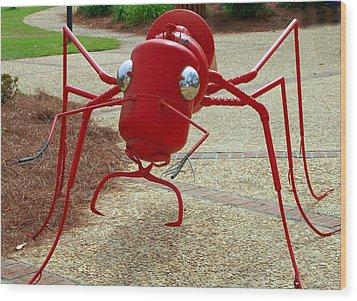 Fire Ant Art Wood Print by Danny Jones