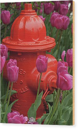 Fire Plug And Tulips Wood Print by Michael Flood
