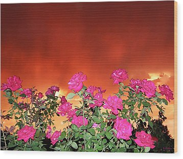 Wood Print featuring the photograph Firery Roses by Wendy McKennon