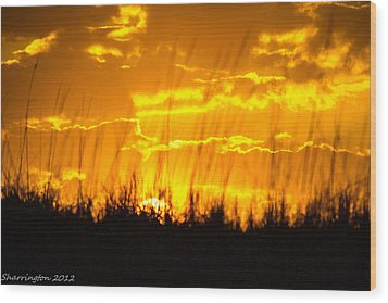 Wood Print featuring the photograph Firey Sunset by Shannon Harrington