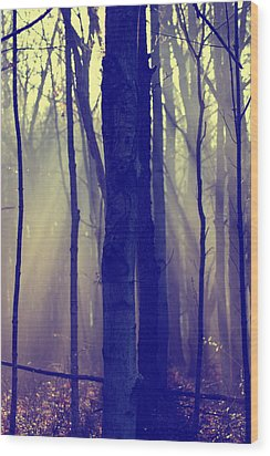 First Light Wood Print by Off The Beaten Path Photography - Andrew Alexander