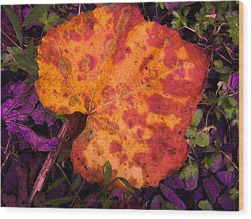 First Sign Of Autumn Wood Print by Gordon H Rohrbaugh Jr