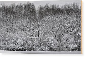 First Snow Wood Print by Diane E Berry
